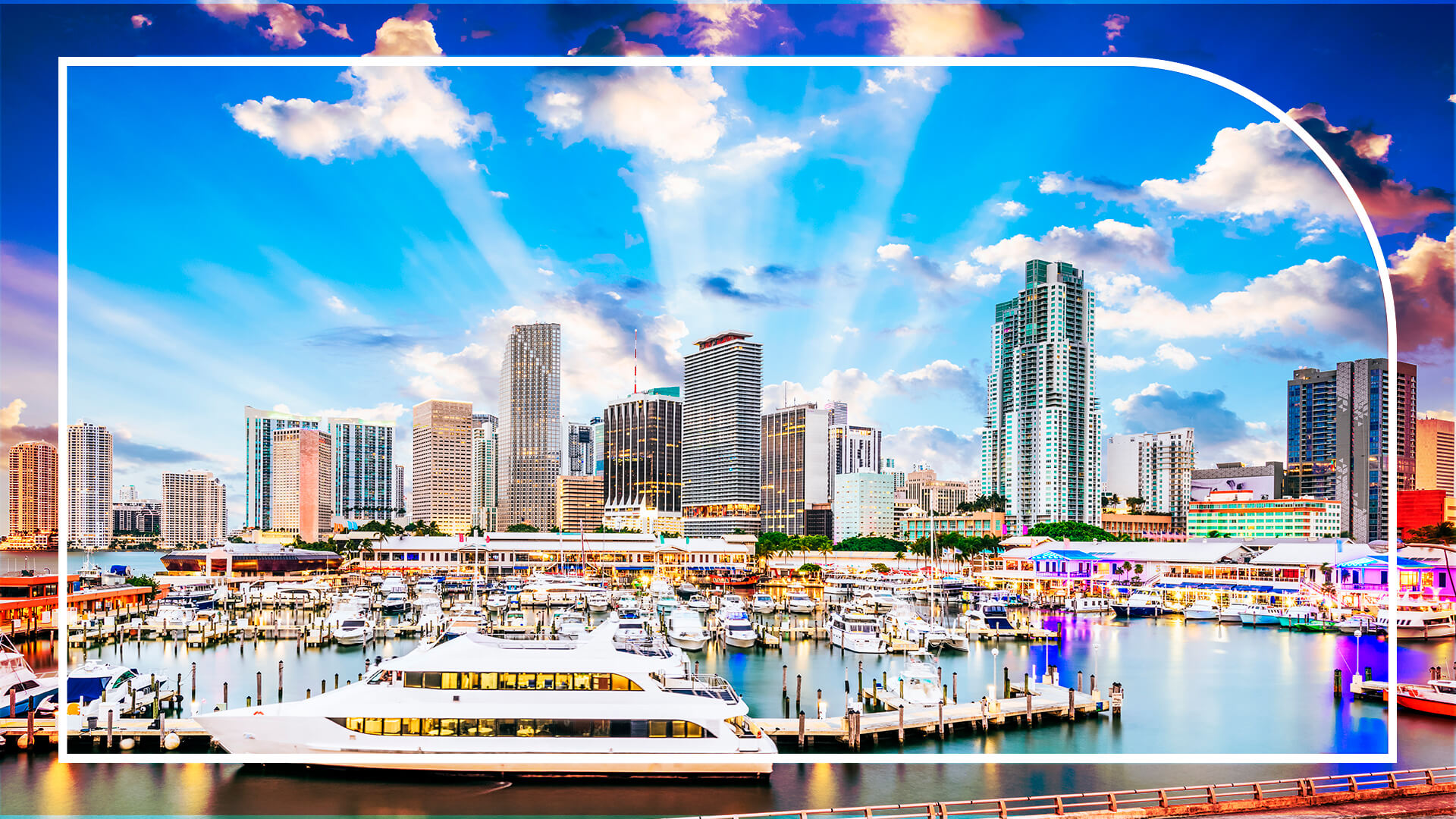Miami Zoom Background - Blog Stay Nuovo